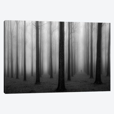 In A Fog Canvas Print #OXM4360} by Jochen Bongaerts Canvas Print