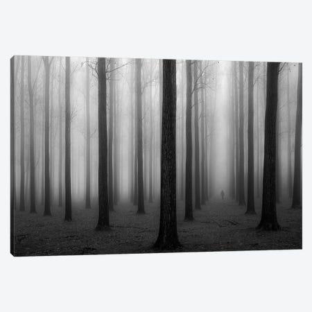 In A Fog Canvas Print #OXM4360} by Jochen Bongaerts Canvas Print
