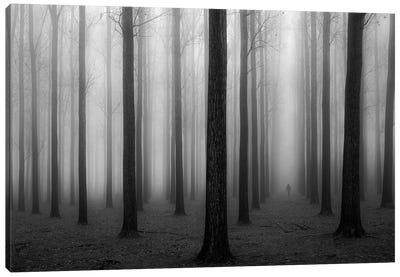 In A Fog Canvas Art Print