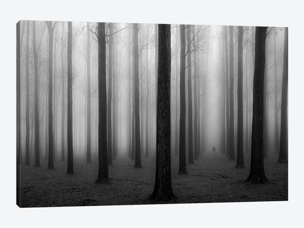 In A Fog by Jochen Bongaerts 1-piece Canvas Art Print