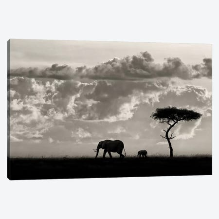 Silhouettes Of Mara Canvas Print #OXM4381} by Mario Moreno Canvas Print