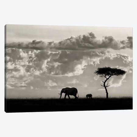 Silhouettes Of Mara 3-Piece Canvas #OXM4381} by Mario Moreno Canvas Print