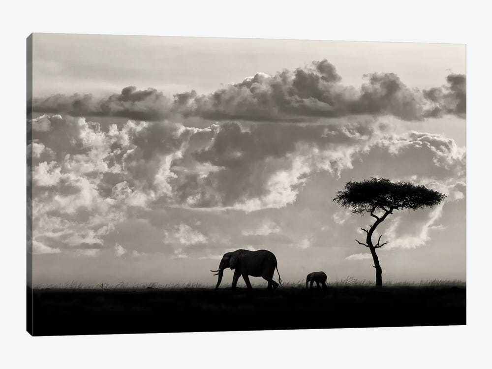 Silhouettes Of Mara by Mario Moreno 1-piece Canvas Art