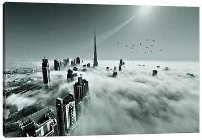 Up Up And Above Canvas Art Print