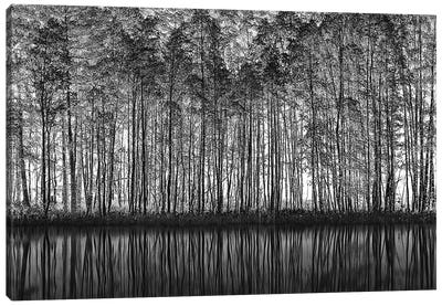 Pointillism Nature Canvas Art Print