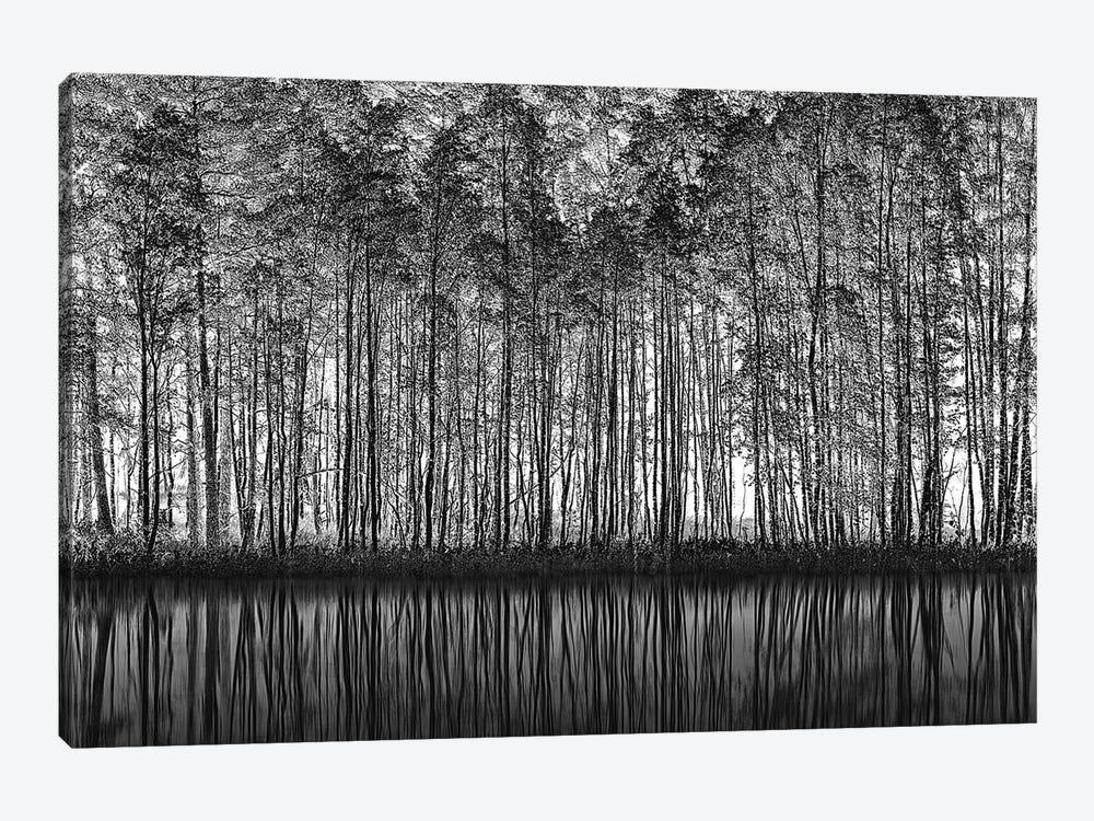 Pointillism Nature by Roswitha Schleicher-Schwarz 1-piece Canvas Print