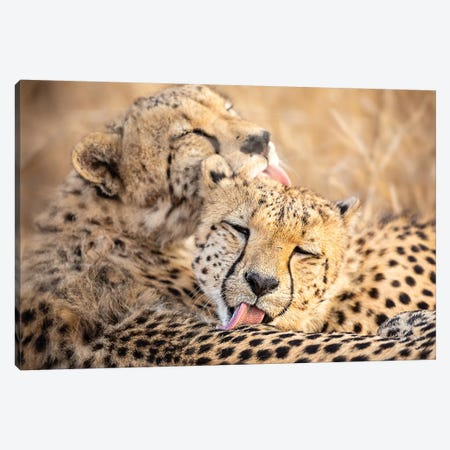 Brother'S Canvas Print #OXM4479} by Amnon Eichelberg Canvas Art Print