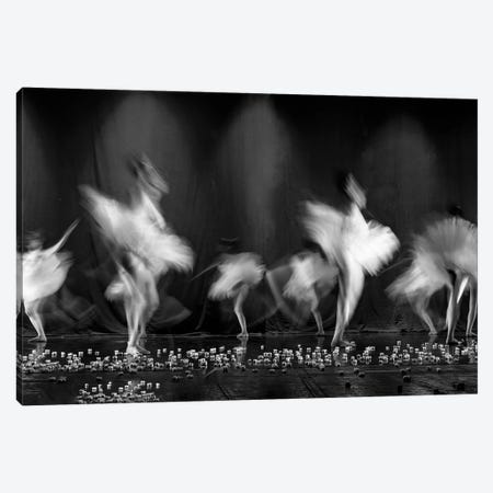 Feathers Canvas Print #OXM4500} by Estherep Art Print
