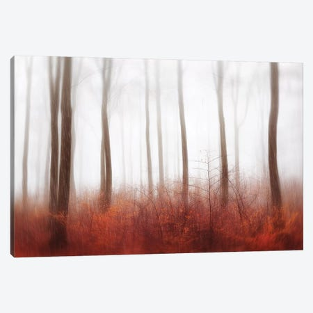 Endless Woods Canvas Print #OXM4510} by Gustav Davidsson Canvas Wall Art
