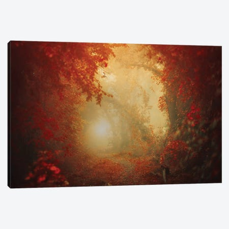 Personal Journey Canvas Print #OXM4515} by Ildiko Neer Canvas Art Print