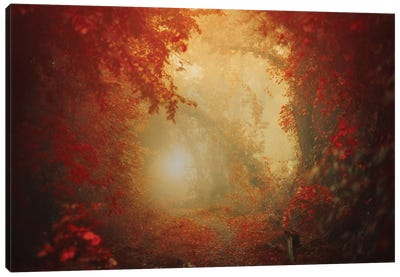 Personal Journey Canvas Art Print