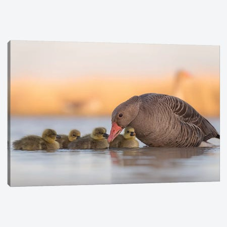 Happy Family Canvas Print #OXM4518} by Jie Fischer Canvas Wall Art