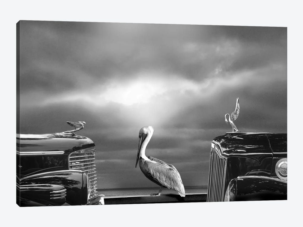 Comtemplating The Pelican by Larry Butterworth 1-piece Canvas Wall Art