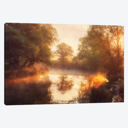 When Nature Paints With Light Ii Canvas Print #OXM4529} by Leicher Oliver Art Print
