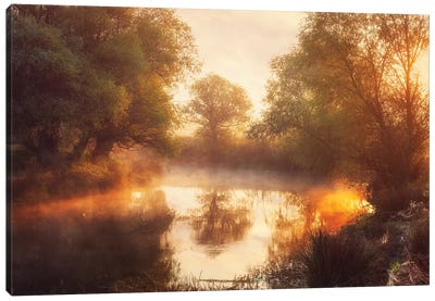 When Nature Paints With Light Ii Canvas Art Print