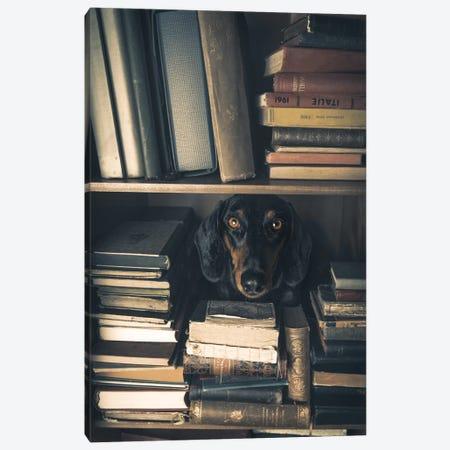 Der Kleine Bibliothekar - Little Librarian Canvas Print #OXM4536} by Heike Willers Canvas Print
