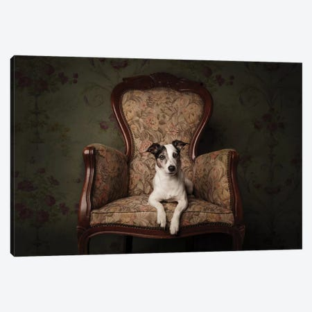 Lady Molly Canvas Print #OXM4538} by Heike Willers Canvas Wall Art