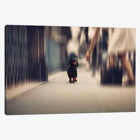 Sometimes We Need A Helping Hand... Canvas Print #OXM4539} by Heike Willers Canvas Artwork