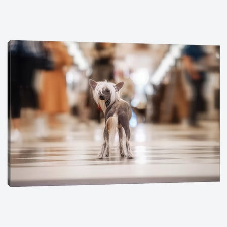 Sophisticated - Monda¤N Canvas Print #OXM4540} by Heike Willers Art Print