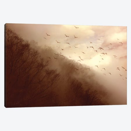 Departure Canvas Print #OXM4549} by Kiyo Murakami Canvas Print