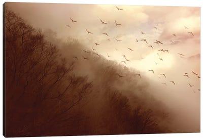 Departure Canvas Art Print