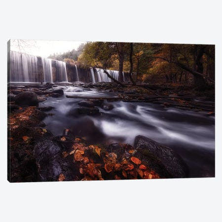 Gloom Canvas Print #OXM4552} by Mario Lechuga Canvas Wall Art