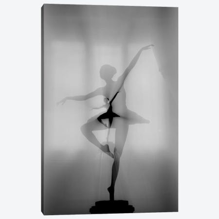 My Favorite Dancer Canvas Print #OXM4578} by Pphgallery Canvas Art