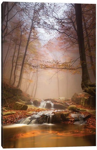 Mistyc Mist Canvas Art Print