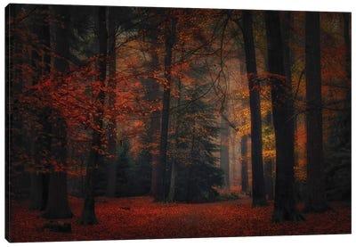 Frozen In Autumn Canvas Art Print