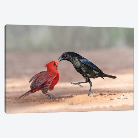 Black And Red Canvas Print #OXM4588} by Siyu And Wei Canvas Art Print