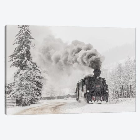 Winter Story Canvas Print #OXM4594} by Sveduneac Dorin Lucian Canvas Art Print