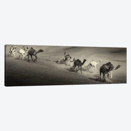 The Way Canvas Print #OXM4597} by Wael Onsy Canvas Print