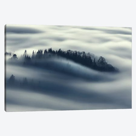 Flow Canvas Print #OXM459} by Kristjan Rems Art Print