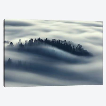 Flow Canvas Print #OXM459} by Kristjan Rems Art Print