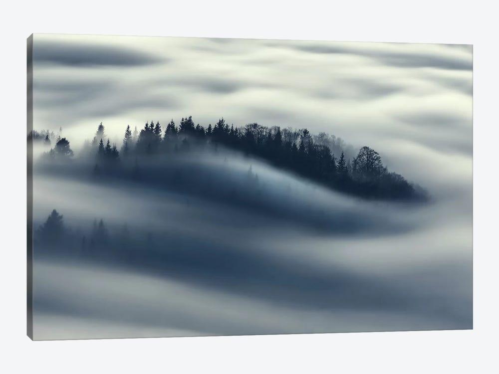 Flow by Kristjan Rems 1-piece Canvas Art