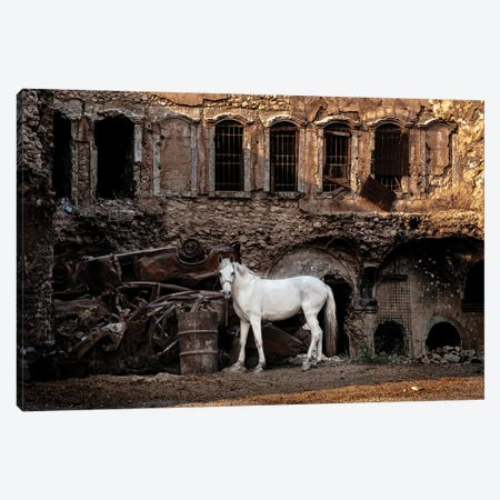 White Horse In A War Zone. Canvas Print #OXM4612} by Saad Salem Al Canvas Print