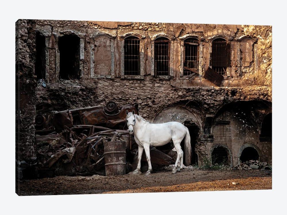 White Horse In A War Zone. by Saad Salem Al 1-piece Canvas Artwork