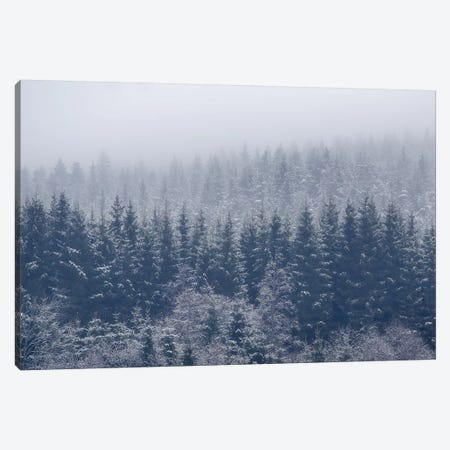 Frozen Trees Canvas Print #OXM4634} by Andreas Christensen Canvas Wall Art