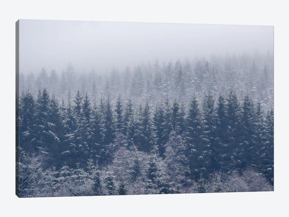 Frozen Trees by Andreas Christensen 1-piece Canvas Art