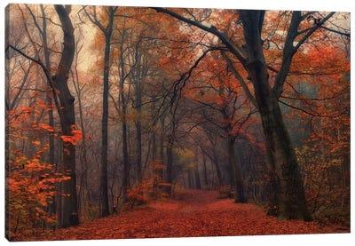 Decorative Forest Canvas Art Print