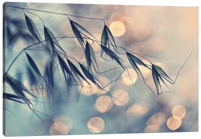 Leaning In The Wind Canvas Art Print
