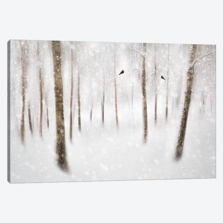 Winter Birches 3-Piece Canvas #OXM4683} by Gustav Davidsson Canvas Art
