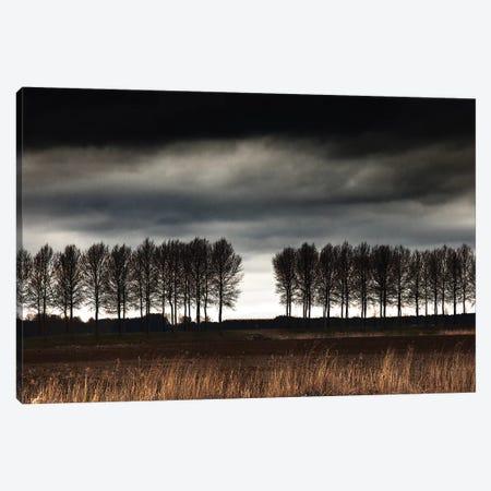 The Space Between. Canvas Print #OXM4687} by Harry Verschelden Art Print