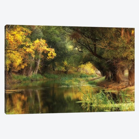 Dressed In Autumn Canvas Print #OXM4714} by Leicher Oliver Art Print