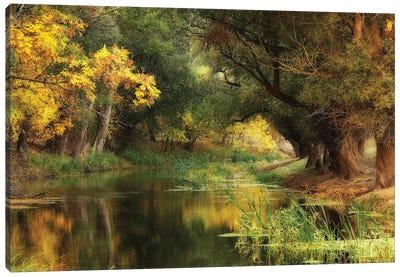 Dressed In Autumn Canvas Art Print