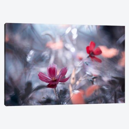 Une Autre Fleur, Une Autre Histoire Canvas Print #OXM474} by Fabien Bravin Canvas Artwork