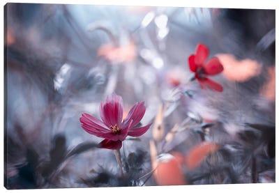 Une Autre Fleur, Une Autre Histoire Canvas Art Print