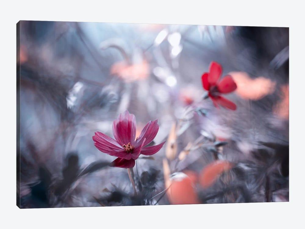Une Autre Fleur, Une Autre Histoire by Fabien Bravin 1-piece Canvas Print