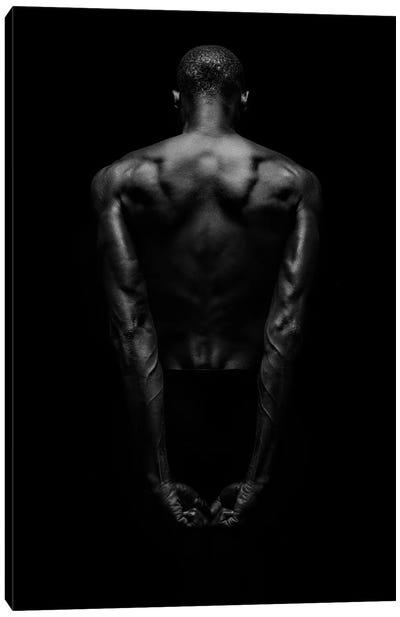 Black Back Canvas Art Print