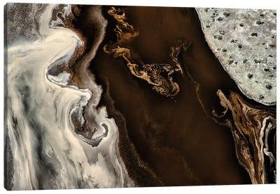 The Pattern Canvas Art Print